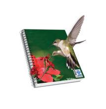 Spirálfüzet, A4, vonalas, 120 lap - Kolibri, SKAG AR