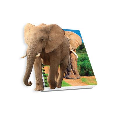 Spirálfüzet, A4, vonalas, 120 lap - Elefánt, SKAG AR
